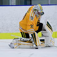2nd year goalie Dawson MacAuley (31) of the Regina Cougars in action during the Men's Hockey Home Game on November 5 at Co-operators arena. Credit: Arthur Ward/Arthur Images