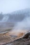 Pump Geyser in Upper Geyser Basin, Yellowstone National Park, Wyoming