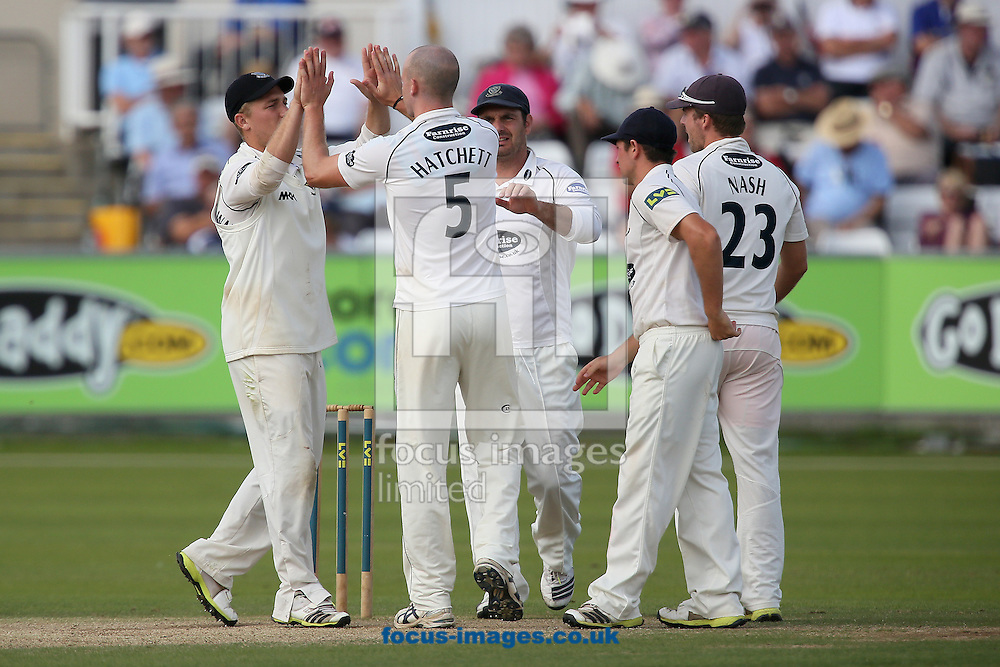 Picture by Paul Gaythorpe/Focus Images Ltd +447771 871632<br /> 04/09/2013<br /> Sussex County Cricket Club players congratulate bowler Lewis Hatchett on taking the wicket of Will Smith of Durham County Cricket Club during the LV County Championship Div One match at Emirates Durham ICG, Chester-le-Street.