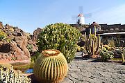 Cactus plants and windmill Jardin de Cactus designed by César Manrique, Guatiza, Lanzarote, Canary Islands, Spain