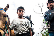 Boys with Horses Guatemala