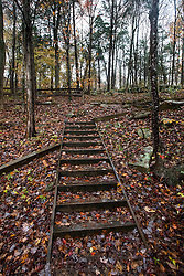 Stairs built into a hill, Mammoth Cave National Park, Kentucky, United States of America