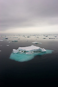 Sea ice in the Southern Ocean