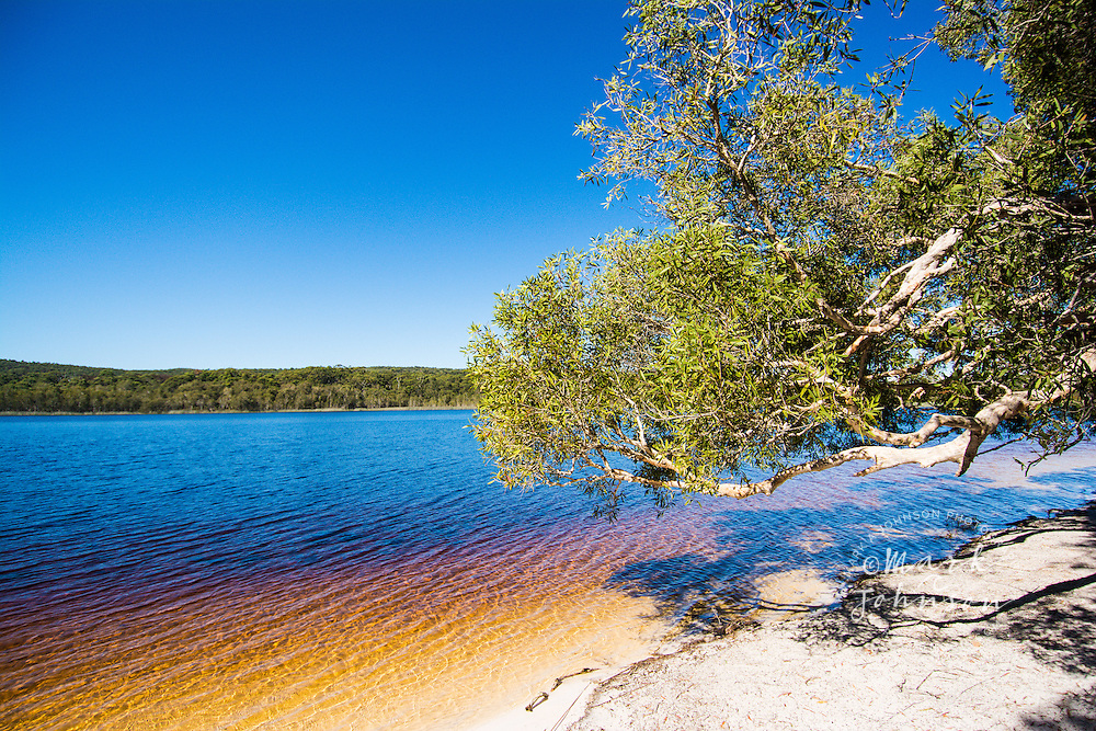 Brown Lake, North Stradbroke Island, Queensland, Australia