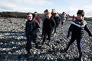 Kelly's oysters school visit