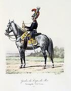 Mounted trumpeter of the King's guard, 1815.  From 'Histoire de la maison militaire du Roi de 1814 a 1830' by Eugene Titeux, Paris, 1890.