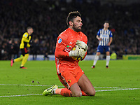 Football - 2019 / 2020 Premier League - Brighton & Hove Albion vs. Watford<br /> <br /> Watford's Ben Foster collects a cross, at the Amex Stadium.<br /> <br /> COLORSPORT/ASHLEY WESTERN