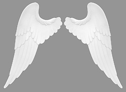 Angel wings isolated on a white background with clipping path