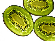Kiwis isolated in white background