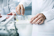 Laboratory, Test, Test Tube, Liquid, Scientific Experiment, Research,
