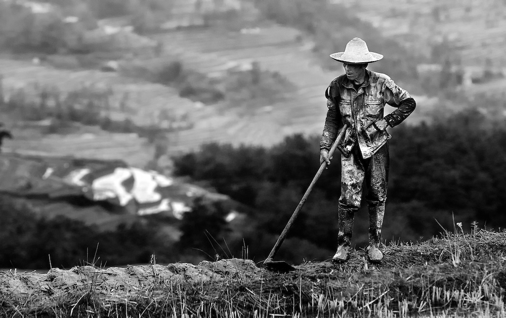 A farmer on the Hani rice terraces in Yuanyang, Yunnan, China