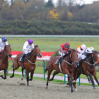 Lingfield 14th November