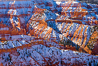 Fresh snow on Cedar Breaks National Monument Utah USA beautiful