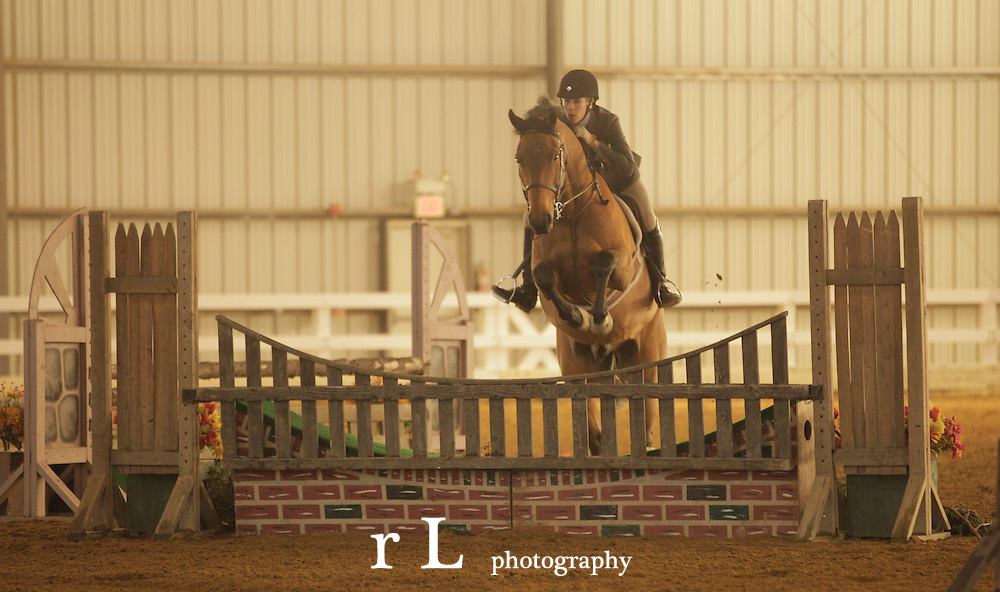 Best sport horse photography from Woodedge at NJ Horse Park