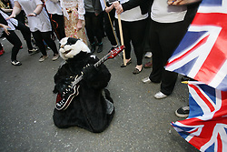 © Licensed to London News Pictures 01/05/2013.A protester from Team Badger plays air guitar outside the entrance of DEFRA, to demonstrate against the cull of badgers..London, UK.Photo: Anna Branthwaite/LNP