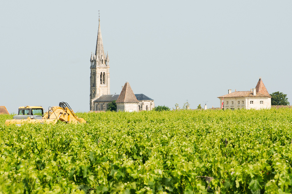 FRANCE, Saint Emilion<br /> A church emerging from the vineyards in Pomerol