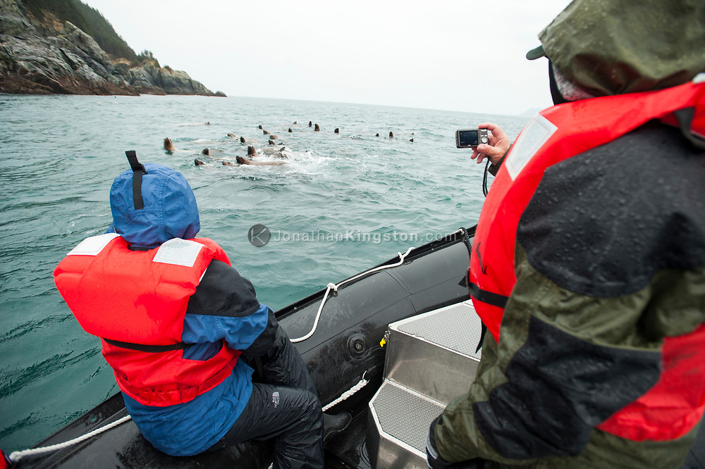 Passengers on a small inflatable boat take photos of sea lions.