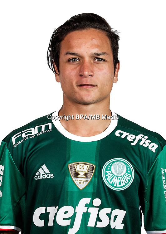 Brazilian Football League Serie A / <br /> ( Sociedade Esportiva Palmeiras ) - <br /> Jose Artur Barbosa De Oliveira &quot; Artur &quot;