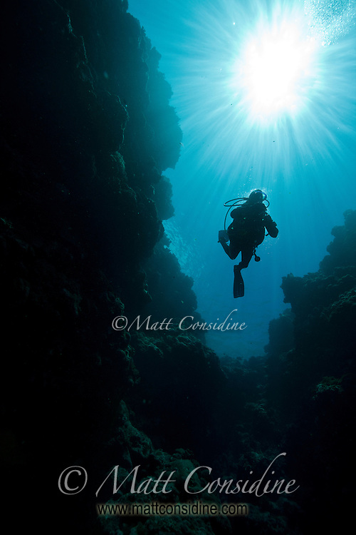 Diver suspended in the crystal clear water, Palau Micronesia. (Photo by Matt Considine - Images of Asia Collection)