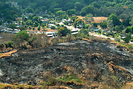 Los incendios forestales, provocados o naturales, son contaminantes.Estos producen negativamente el incremento de las emisiones de dióxido de carbono, la disminución de las emisiones de oxigeno y la pérdida de los suelos. <br /> <br /> Un artículo publicado por Vegetomanía dice:<br /> es importante la labor delhombre sobre la naturaleza ya que es el único ser capaz de modificarla en su provecho, pero cuando esta acción se vuelve exagerada, movida por mezquinos intereses económicos, sin tener en cuenta quetodo lo que nos rodea está en un perfecto equilibrio, éste se rompe, poniendo en riesgo el presente, y sobre todo, el futuro del planeta.<br /> <br /> ©Alejandro Balaguer/Fundación Albatros Media.