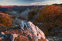 "Sunrise over the Crovu Mare (""Big Valley"") with the ridges of Domogled Valea Cernei National Park (left) and Godeanu mountains (far right) at the horizon. Mehedinti Plateau Geopark, Geoparcul Platoul Mehedinți, Romania."