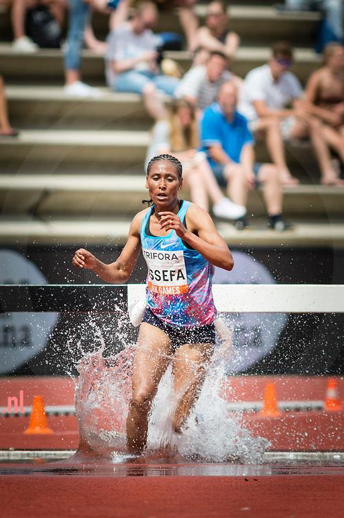 Nederland, Hengelo 11juni2017 FBK Games Nieuw ethiopisch record op de 3000 steeple chase voor Sofia Assefa in een tijd van 09:07:06 bij twee sec. sneller dan het ouder record (ook Assefa)