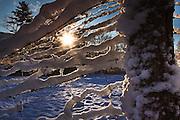 sun shining through snow covered cow fence, E. Dorset, VT