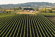 Aerial view of Bergstrom winery, Yamhill-Carlton AVA, Willamette Valley, Oregon