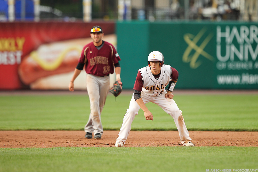 May 16, 2015; York, PA, USA; The Alvernia Crusaders against the Salisbury Seagulls in the NCAA Regional at Santanner Stadium in York, PA. Mandatory Credit: Brian Schneider-www.ebrianschneider.com