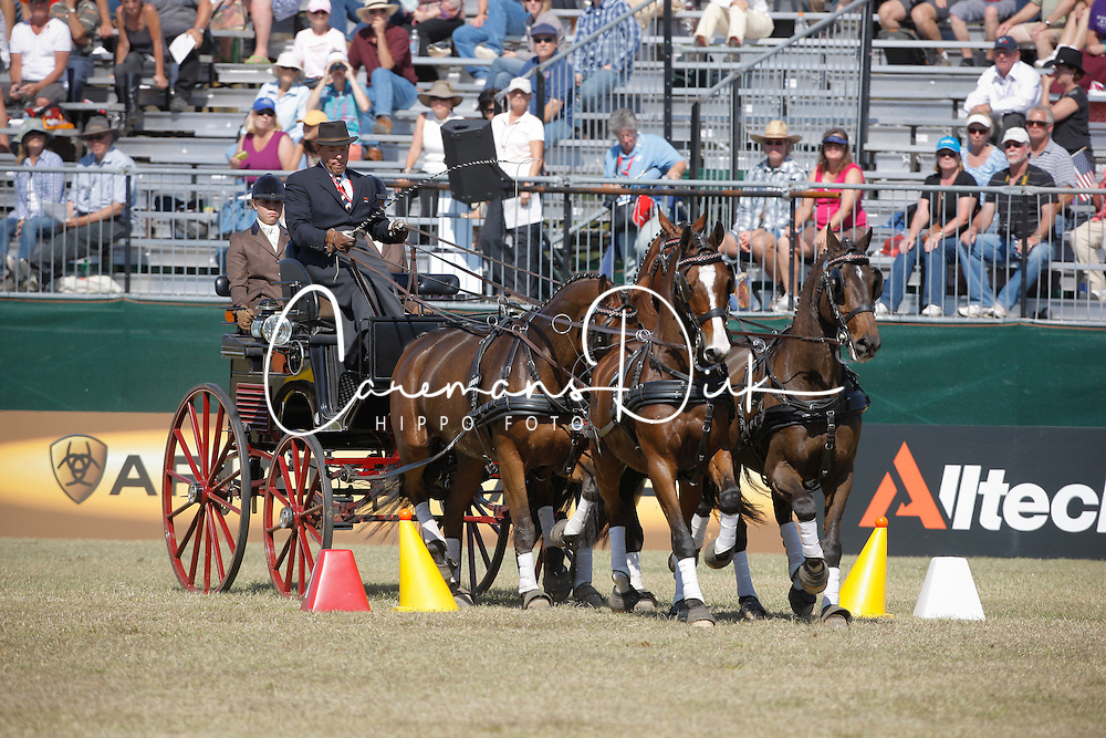 IJsbrand Chardon (NED)<br /> Cones driving competition <br /> Alltech FEI World Equestrian Games <br /> Lexington - Kentucky 2010<br /> &copy; Hippo Foto - Dirk Caremans