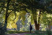 Schlosspark Belvedere, Weimar, Thüringen, Deutschland | palace park Belvedere, Weimar, Thuringia, Germany
