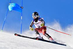 PEMBLE Mel, LW9-2, CAN, Giant Slalom at the WPAS_2019 Alpine Skiing World Cup, La Molina, Spain