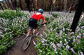 Biking - Mtn Biking