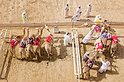 Aerial view of the Camel Race starting line at Al Marmoum track in Dubai.