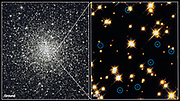 White Dwarf stars in Globular Cluster M4.H.Bond (STSCI). NASA photograph.