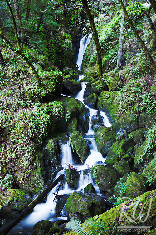 Cataract Falls, Marin Municipal Water District, California