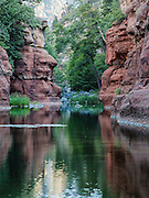 In the cool morning light, the red sandstone walls appear almost purple, near Slide Rock in Oak Creek Canyon.