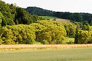 Landschaft im westlichen Odenwald, Hessen, Deutschland | Landscape in the western Odenwald, Hesse, Germany