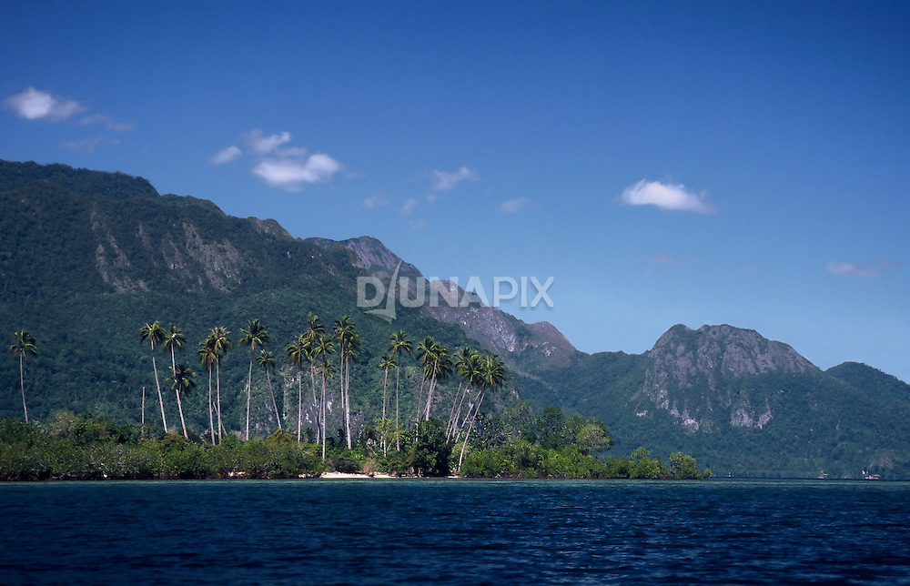 Beach and mountain view in Sawai Bay, base camp for canopy climbing expeditions.