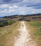 Chalk footpath on South Downs near Devil's Dyke, Sussex, England