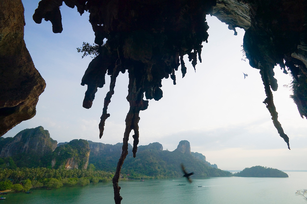 Limestone stalactites Railay Bay East Ao Railay Thailand&amp;#xA;<br />