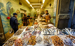 Early morning at a fish shop in the Via Drapperie, Bologna, Italy<br /> <br /> (c) Andrew Wilson | Edinburgh Elite media