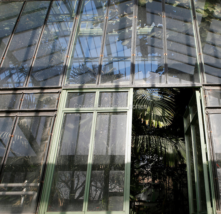 Tropical Rainforest Glasshouse (formerly Le Jardin d'Hiver or Winter Gardens), 1936, René Berger, Jardin des Plantes, Museum National d'Histoire Naturelle, Paris, France. Low angle view from the Desert and Arid Lands Glasshouse which is reflected in the glass and metal wall between the two glasshouses. The luxuriant tropical vegetation appears through the open door.