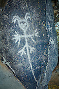 "A mystreious or mythical figure etched into a rock on the ""Temani Pesh-wa"" trail (also ""written on rock"" trail) in Columbia Hills State Park on the Washington Side of the Columbia River Gorge. This petroglyph was removed from the famous ""Petroglyoh Canyon"" along the Columbia River before it was flooded by construction of The Dalles Dam in 1957. The Army Corps Of Engineers stored the rock art until 2004 when Temani Pesh-wa trail was built."