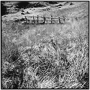 alter Holzzaun in einer Wiese, a fence in dried grass, vielle cloture dans pré