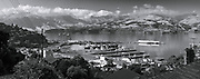 Elevated panoramic view of the port of Lyttelton, Canterbury, New Zealand, looking out over the rooftops past the cargo terminal towards the Banks Peninsula mountain landscape, framed by trees