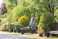 Man pushing wheelbarrow at garden