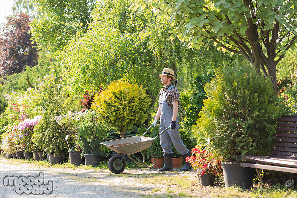 Man pushing wheelbarrow at garden