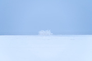 Hoar frost and frozen lake at the U.S. Fish & Wildlife Waterfowl Production Area on Flathead Lake