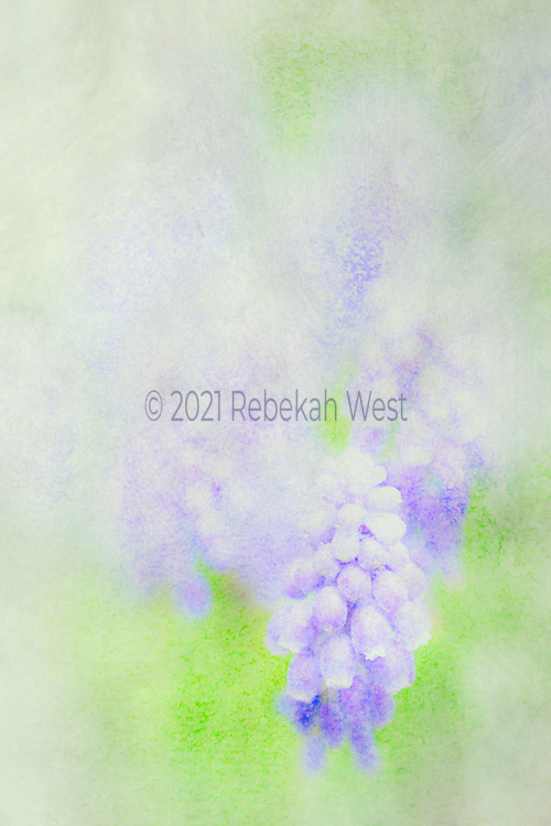 soft clear bell flowers emerging from watery vertical field of greys and vivid green, greenery under and over layers, greenery, flower art, feminine, high resolution, licensing, iridescent, vertical, 2743 x 4114